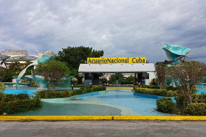 La habana con ni os parques acuarios zool gicos y for Como llegar a jardines de la reina cuba