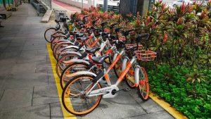 Alquiler de bicicletas, una forma sana y ecológica de moverse por Singapur