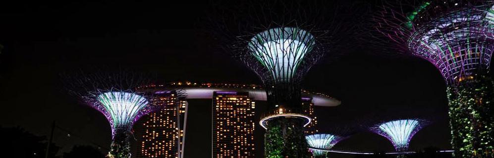 Arboles-Singapur