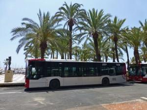 Autobús urbano de Alicante. cómo moverse por Alicante