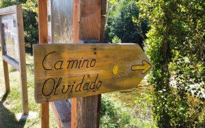 Camino Olvidado a su paso por Espinosa de los Monteros