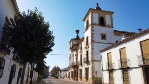 Casa de las Torres sobresaliendo entre el caserío