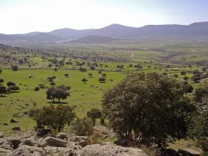 Reserva de la Biosfera del Real Sitio de San Ildefonso - El Espinar, atracciones de Segovia