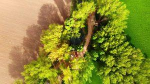 Vista aérea de la Fuente Redonda de Uclés