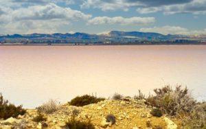 Lagunas de la Mata y Torrevieja, una de las atracciones de Alicante
