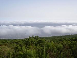 Mar de nubes visto desde un mirador de la carretera TF-21