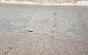 Mosaico de la muerte de Adonis en la Villa de Materno