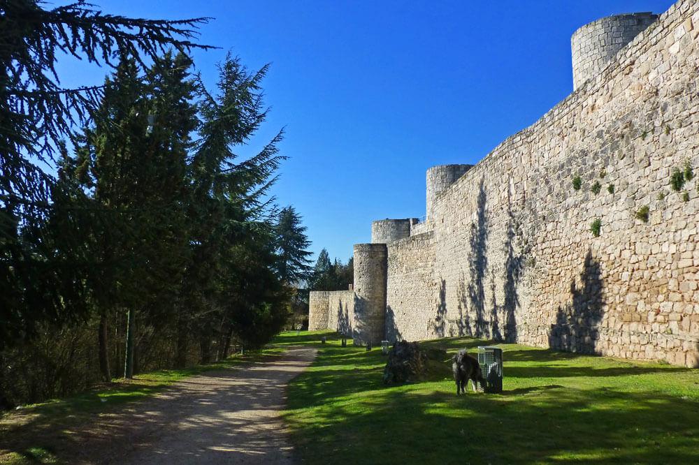 Historia de Burgos