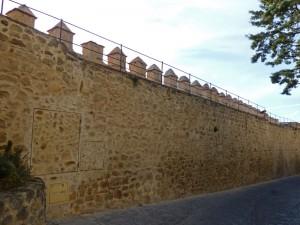 Lienzo sur de la muralla de Segovia