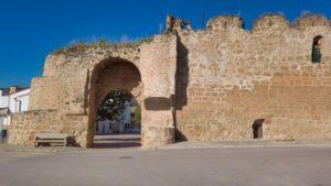 Restos de la muralla de Buendía