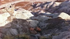 Petrified Forest, guía para visitar uno de los parajes naturales más singulares de los Estados Unidos