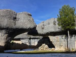 Los Osos en la Ciudad Encantada de Cuenca