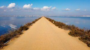 Sendero de las Encañizadas entre el Mar Menor y las charcas salineras