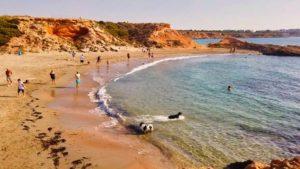 Playa canina junto a Cala Mosca, la única de Orihuela Costa a la que se puede ir con perros