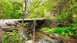 Puente sobre el Río Dulce