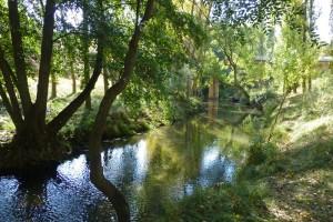 Río Duratón en los alrededores del Puente de Villaseca