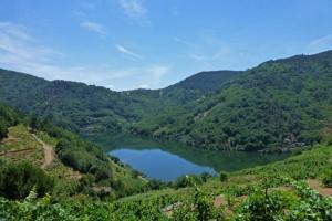 Río Miño antes de llegar al Embalse de Os Peares, ruta de los embalses de la Ribeira Sacra