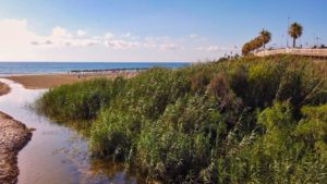 Desembocadura del Río Seco