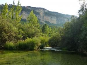 Río Tajo, el protagonista indiscutible del Parque Natural del Alto Tajo