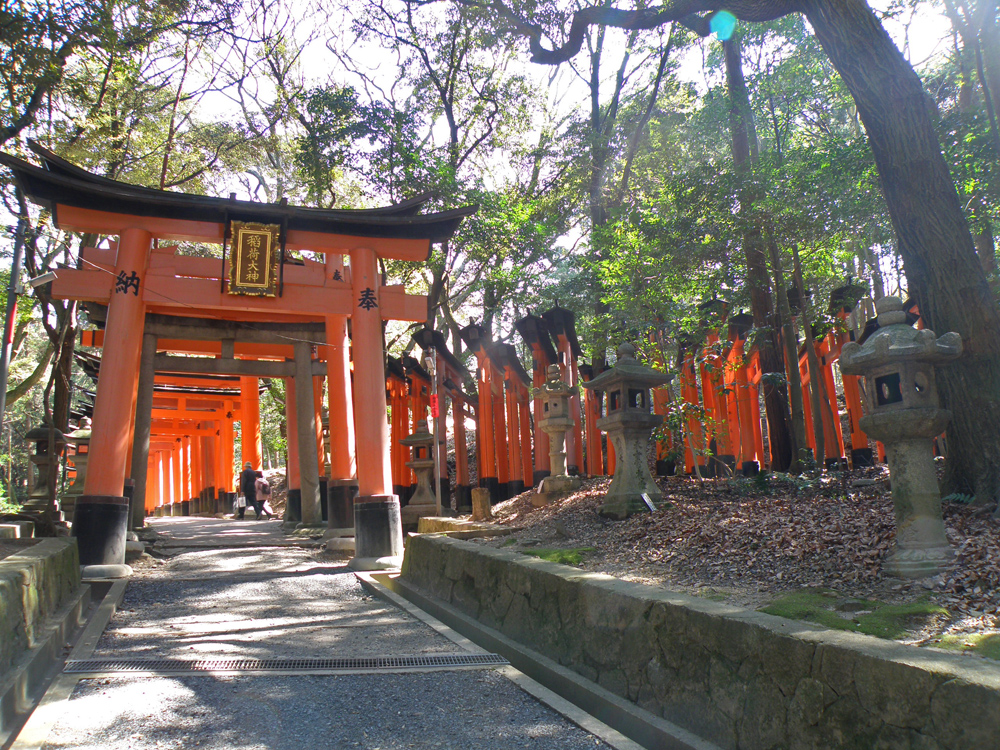 Torii cubriendo la montaña del santuario Fushimi Inari Taisha