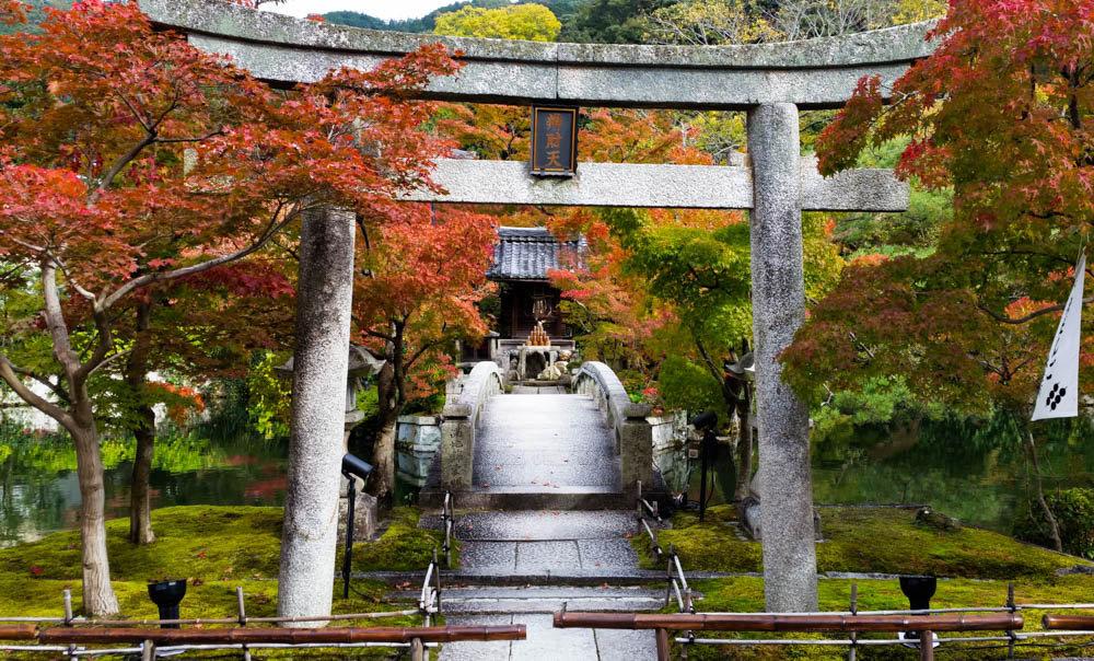 Torii de entrada al Templo Eikando o Zenrinji