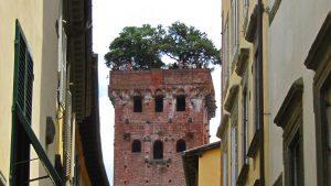 Torre Guinigi, la más emblemática de las torres de Lucca
