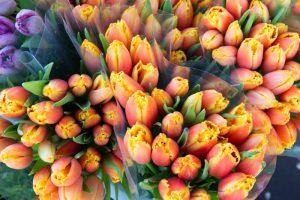Ramo de tulipanes en el Mercado de la Flores de Ámsterdam