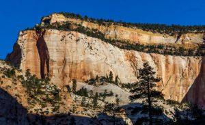 Guía para visitar el Parque Nacional Zion