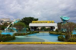 Acuario Nacional de Cuba en el barrio Miramar, atracciones de Cuba